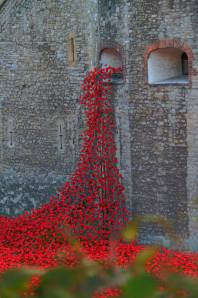 The Weeping Willow of poppies at The Tower of London
